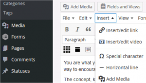 WordPress dashboard left column selections