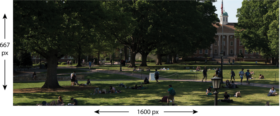 Example of parallax image with size recommendation:667 pixels by 1600 pixels