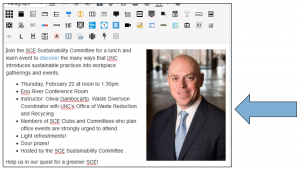 Screen shot of WordPress Visual Editor with inserted photo