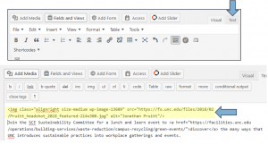 Screen shot of WordPress text editor with highlighted HTML with alt text added