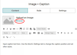Image and caption editing page content panel to upload image