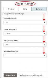 image and caption editing block, settings pane